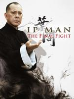 descargar Ip Man: La Pelea Final