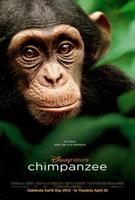 descargar Chimpances